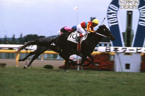 【競馬ネタ】何十年も昔の馬なのに今風な名前の馬