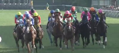 札幌芝2000mの傾向と札幌記念登録馬の札幌芝実績