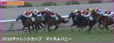 阪神芝2000mの傾向とチャレンジカップ登録馬の阪神芝実績