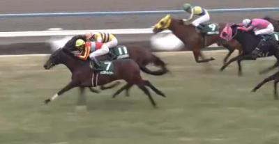 東京ダ1400m/騎手・種牡馬データ(2018根岸S)