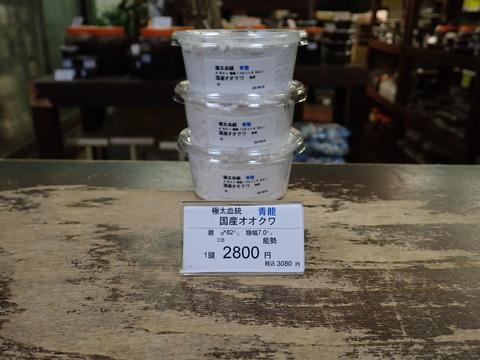 青龍2800