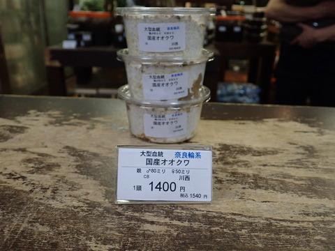 奈良輪1400