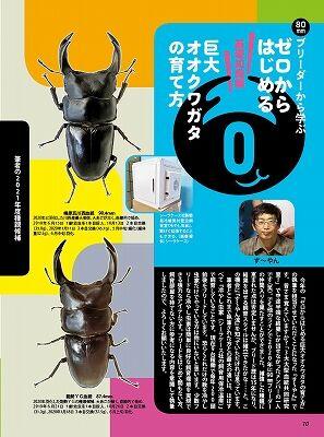 BE-KUWA79-10