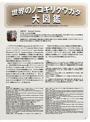 BE-KUWA79-3
