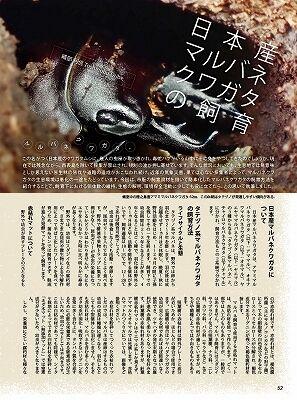 BE-KUWA-78-052-073-52