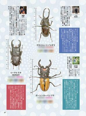 BE-KUWA-81-006-038
