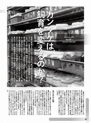 BE-KUWA-78-074-097-92