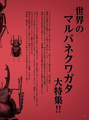 BE-KUWA-78-001-0052