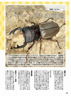 BE-KUWA-78-052-073-66