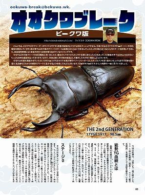 BE-KUWA-72-066