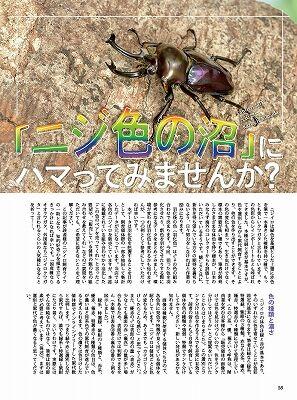 BE-KUWA79-9
