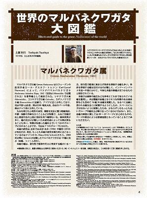 BE-KUWA-78-006-017