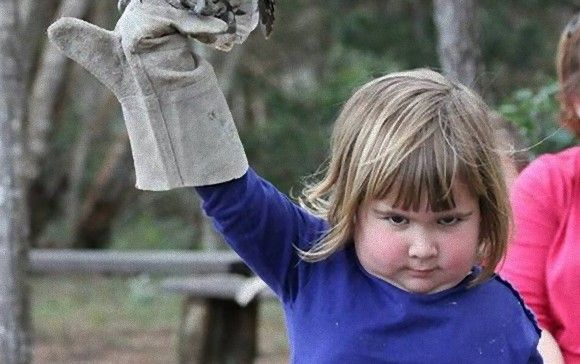 指先にフクロウを宿した少女のネットミームで雑コラ増殖中