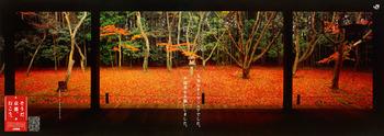 1996_autumn