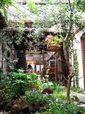 Falafel Garden その3