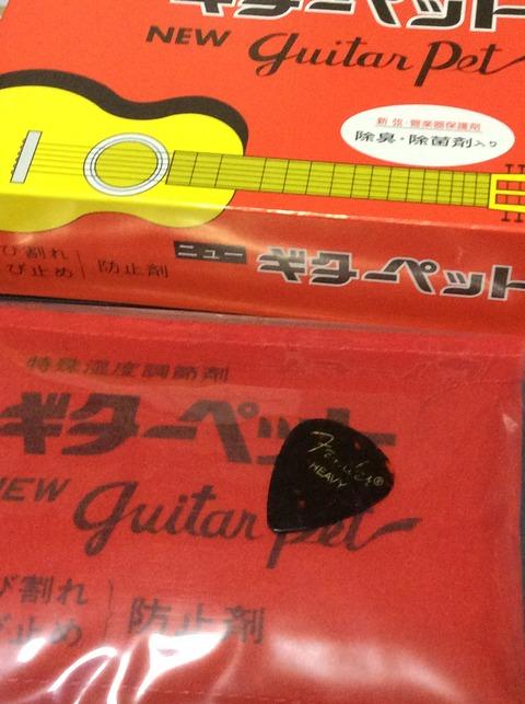 ギターペット