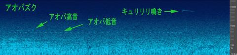 Aobazuku001001 (2)