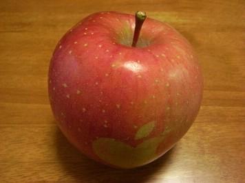 apple00010003