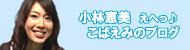 えへっこばえみのブログ