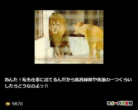 宿六ライオン