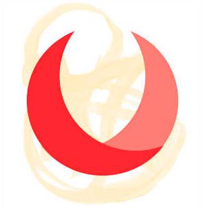 Voxox-Logo