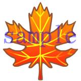 イラストレイン「紅葉」