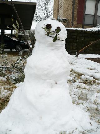 2011年1月・・・・早くも積雪