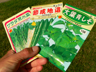 キュウリ、水菜、紫蘇・・・たまらんです