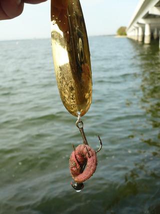 ジグヘッドを釣るのもスゴイと思う。