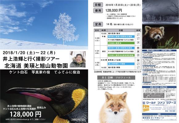 20171124_井上浩輝_美瑛&旭山動物園_blog