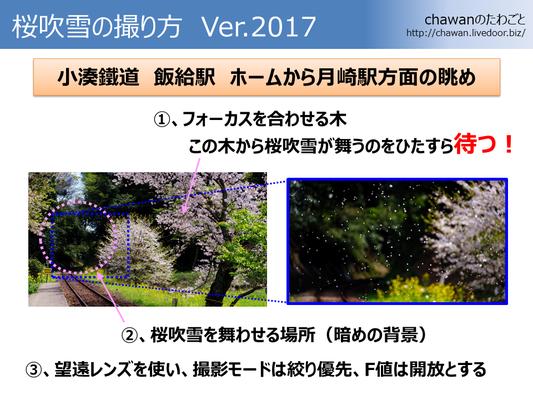 170421_桜吹雪