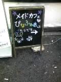 b4738f04.jpg