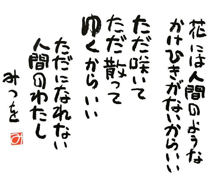_20170214_123718-732x612