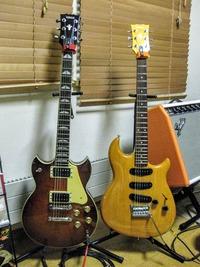 guitars_(29)