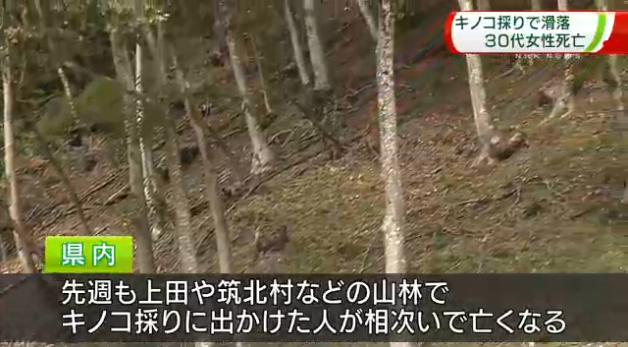 長野県のニュース
