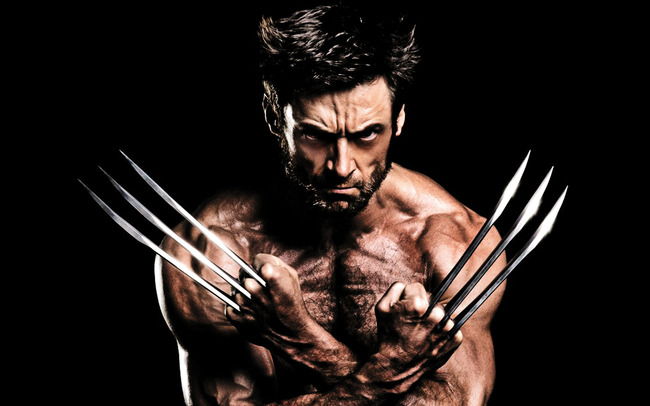 2013_the_wolverine-widescreen_wallpapers (1)