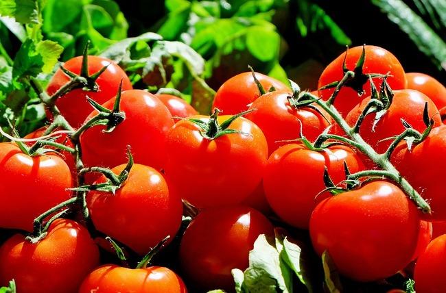トマトトマトトマトを高速フリック入力する時の難易度は異常