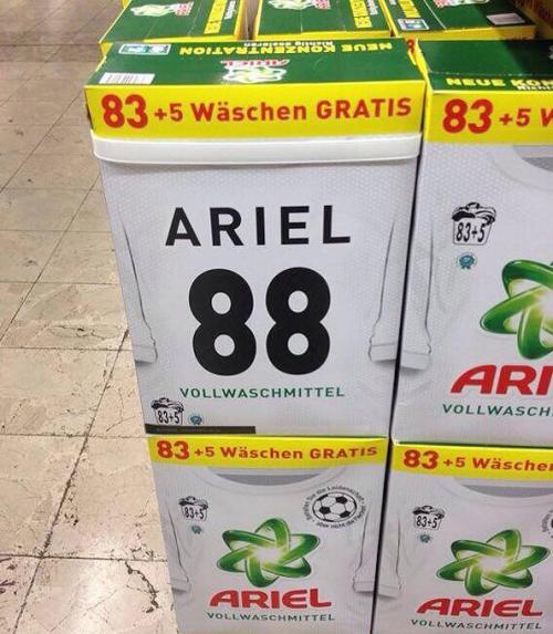 ariel1-500x573