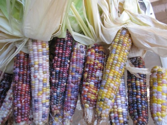 Glass-Gem-Corn-04-634x475
