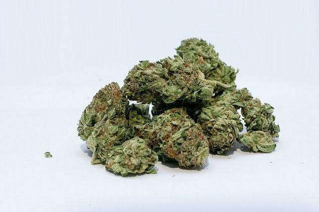 marijuana-2174302_640