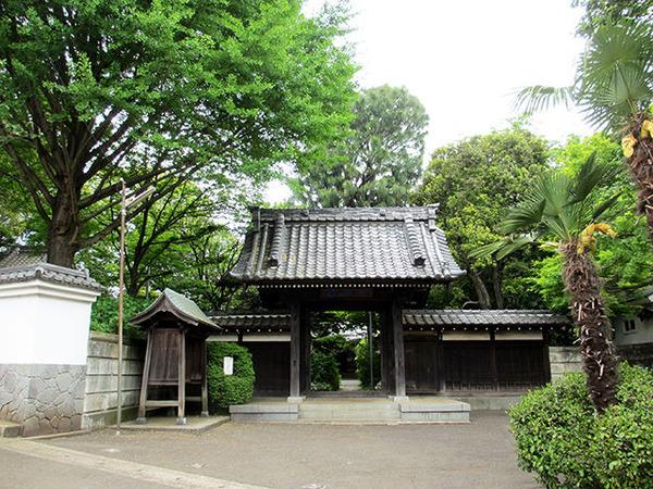 orimoto_shinsho1