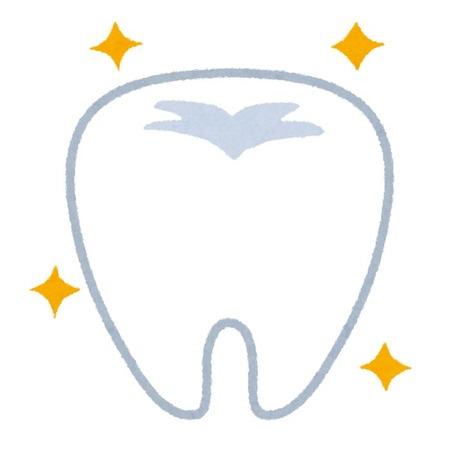 「歯生え薬」 実用化目指す