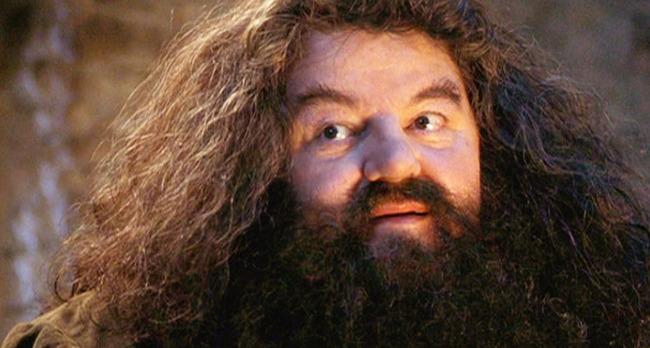 HagridHeader