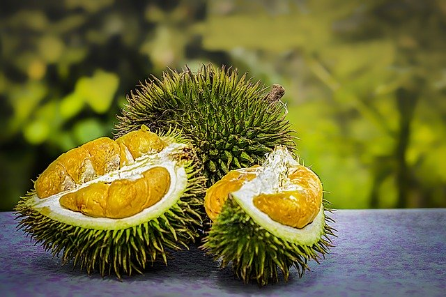 durian-3597242_640