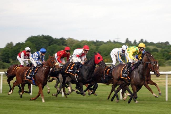 horse-racing-2714850_960_720