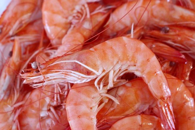 shrimp-1811954_960_720