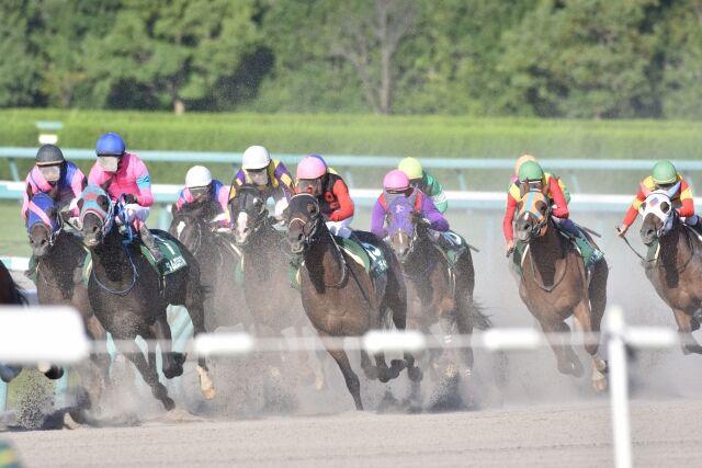 競馬関係者が3億円の所得隠しか 馬の情報を共有して違法に馬券を購入