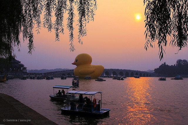 duck-w-2013beijing2_mini