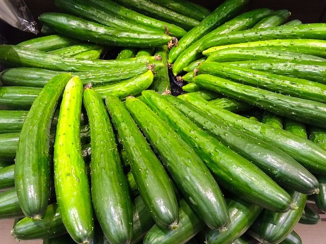 cucumber-1699024_640