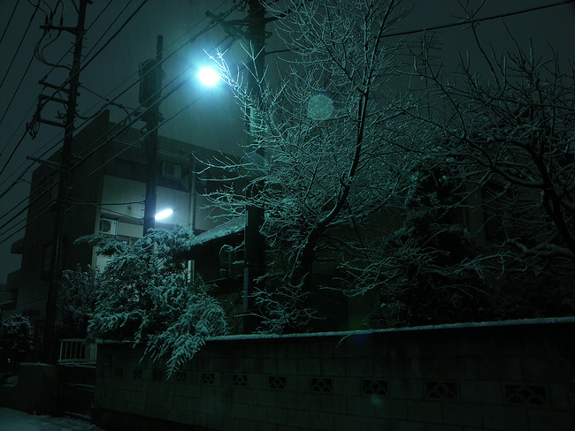 yuki001